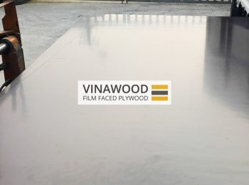 VINAWOOD-FILM-FACED-PLYWOOD-7