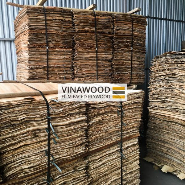 VINAWOOD-FILM-FACED-PLYWOOD-0403-8