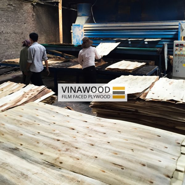 VINAWOOD-FILM-FACED-PLYWOOD-2