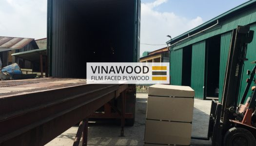 VINAWOOD-FILM-FACED-PLYWOOD-11
